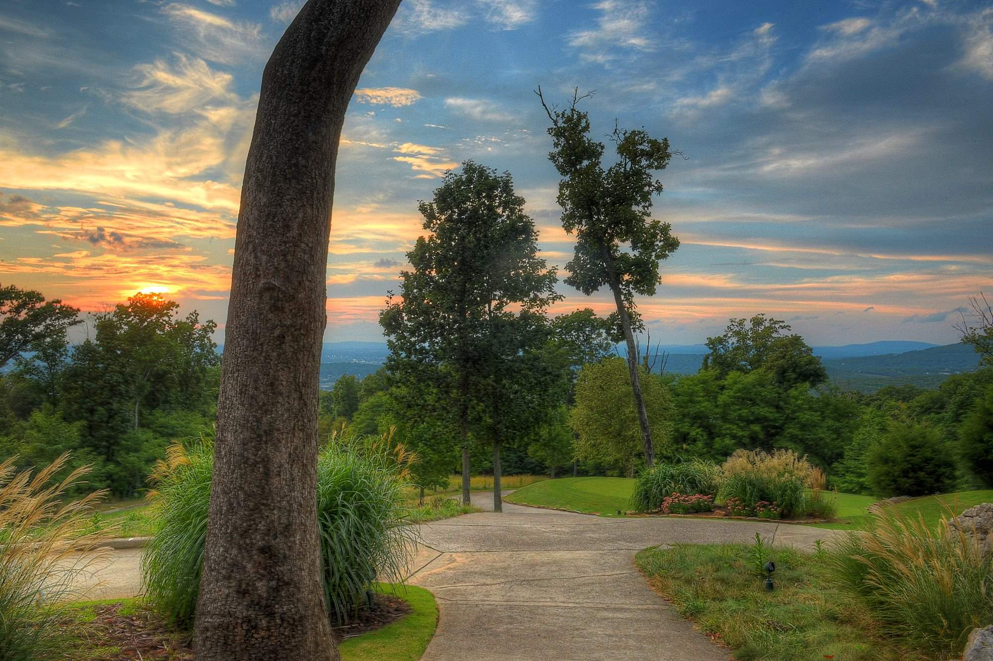 3_Front_Cart_Path_Sunset_(2)
